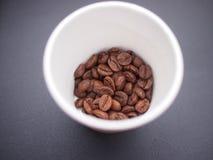 Kaffeebohnen im Papiercup Lizenzfreies Stockbild