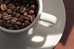 Kaffeebohnen im weißen Cup lizenzfreies stockfoto