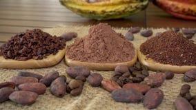 Kaffeebohnen, Kakaospitzen, Kakaopulver, rohe Kakaofrucht, Kakaobohnen auf Leinwand stock footage