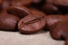 Kaffeebohnen - Makro Stockfotografie