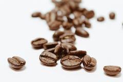 Kaffeebohnen Makro Lizenzfreies Stockfoto