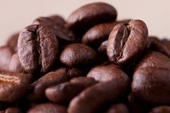 Kaffeebohnen Makro Stockbilder