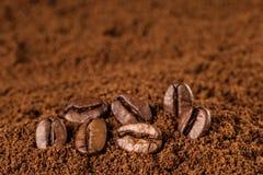 Kaffeebohnen Makro auf Hintergrund des gemahlenen Kaffees Lizenzfreie Stockbilder