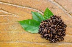 Kaffeebohnen mit Blättern Stockfoto