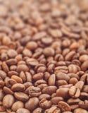 Kaffeebohnen mit Fokus auf einem Stockfoto