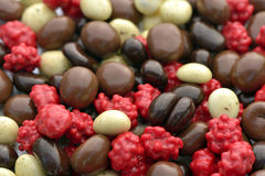 Kaffeebohnen mit Schokolade überzogen stockfotografie