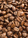 Kaffeebohnen schließen oben Lizenzfreie Stockfotos