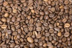 Kaffeebohnen schließen oben Lizenzfreies Stockfoto