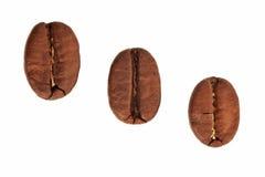 Kaffeebohnen schließen oben in getrenntem weißem Hintergrund Lizenzfreie Stockfotos