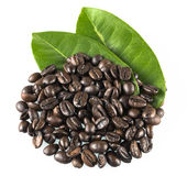 Kaffeebohnen und Blätter lizenzfreies stockbild