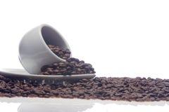 Kaffeebohnen und eine weiße Schale Lizenzfreies Stockbild