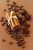 Kaffeebohnen und Gewürze Stockbilder