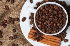 Kaffeebohnen, Zimt und Anissamen in der Kaffeetasse Stockfotos