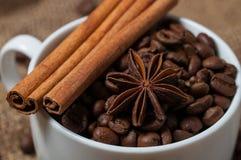 Kaffeebohnen, Zimt und Anissamen in der Kaffeetasse Makro Lizenzfreies Stockfoto