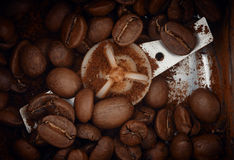 Kaffeebohnenaufbereiten Lizenzfreies Stockfoto