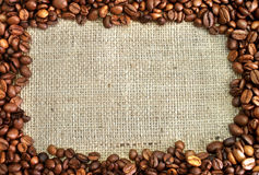 Kaffeefeld Stockbild