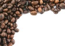 Kaffeefeld stockfoto
