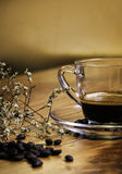 Kaffeekonzept für Design und Anzeige lizenzfreies stockbild