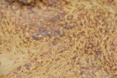 Kaffeeoberfläche Lizenzfreies Stockbild