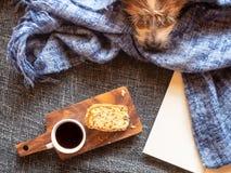 Kaffeepause MIT kleinen Hund auf-einem Sofa lizenzfreie stockfotografie