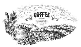 Kaffeeplantagelandschaftstasche und -busch im von Hand gezeichneten Vektor der grafischen Art stock abbildung