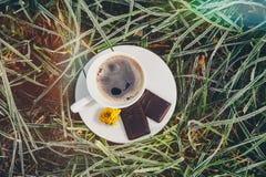 Kaffeetasse auf dem gefrorenen Gras Lizenzfreies Stockbild