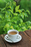 Kaffeetasse auf hölzerner Tabelle mit grünem Hintergrund Stockfotografie