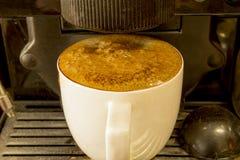 Kaffeetasse in der Maschine zu Hause Lizenzfreies Stockbild