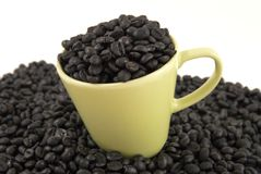 Kaffeetasse mit Kaffeebohnen Stockbilder