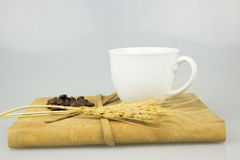 Kaffeetasse- und Buchisolathintergrund Lizenzfreies Stockbild