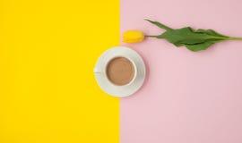 Kaffeetasse und eine Tulpe Lizenzfreies Stockbild
