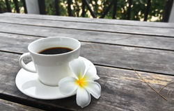 Kaffeetasse und Frangipani-Blume lizenzfreie stockbilder
