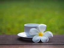 Kaffeetasse und offenes Buch mit Blume auf Holztisch, Weichzeichnung Stockfotos