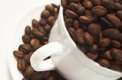 Kaffeetasse voll Kaffeebohnen, Abschluss oben Stockfotografie