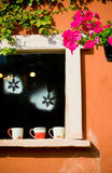 Kaffeetassen gesetzt am Verzierungsweinlesefenster Stockfotografie
