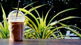Kaffeetasseplastik auf Tabelle in der thailändischen Art des Sonnenscheinmorgens stockbild