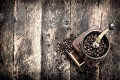 Kaffegrinder med kaffebönor Royaltyfri Foto