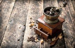 Kaffegrinder med kaffebönor Arkivbild