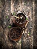 Kaffegrinder med kaffebönor Fotografering för Bildbyråer