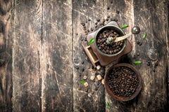 Kaffegrinder med kaffebönor Royaltyfria Foton