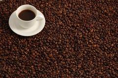 kaffekopp Royaltyfri Foto