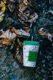 Kaffekopp i hösten och den stads- miljön fotografering för bildbyråer