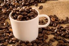 Kaffekopp och bönor 2 arkivbilder