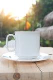 Kaffekopp på tabellen med solljus Arkivfoto