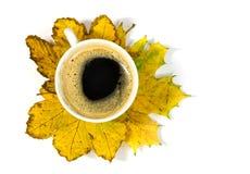 Kaffekopp på höstliga lönnlöv Fotografering för Bildbyråer