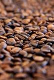 kaffekorn arkivfoto