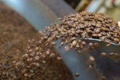 Kaffekorn som faller från skopan Royaltyfri Fotografi