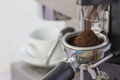 Kaffekvarn som maler nytt grillade kaffebönor in i en coff Royaltyfria Foton