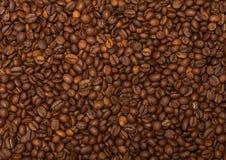 Kaffemodell Arkivfoto