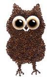 KaffeOwl Royaltyfri Bild